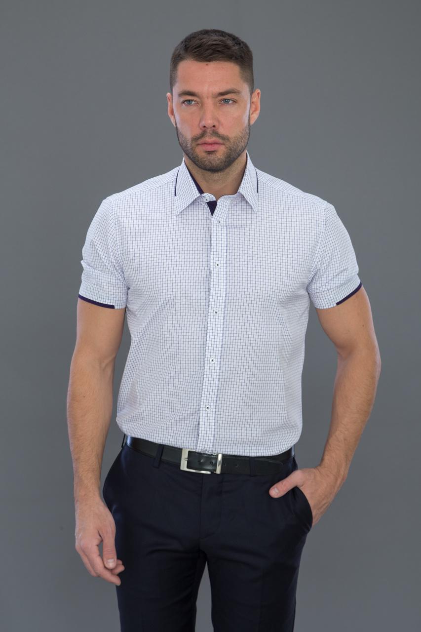 мужские рубашки адреса